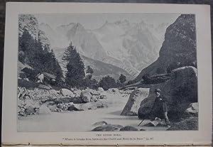 Rambles in Alpine Valleys: Tutt, J.W.
