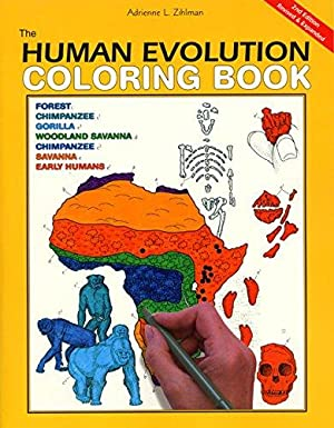 The Human Evolution Coloring Book: Zihlman, Adrienne L.