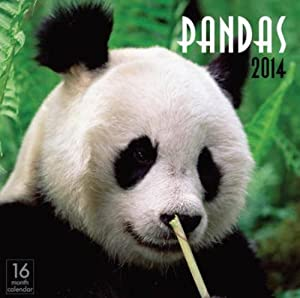 Pandas 2014 Wall Calendar