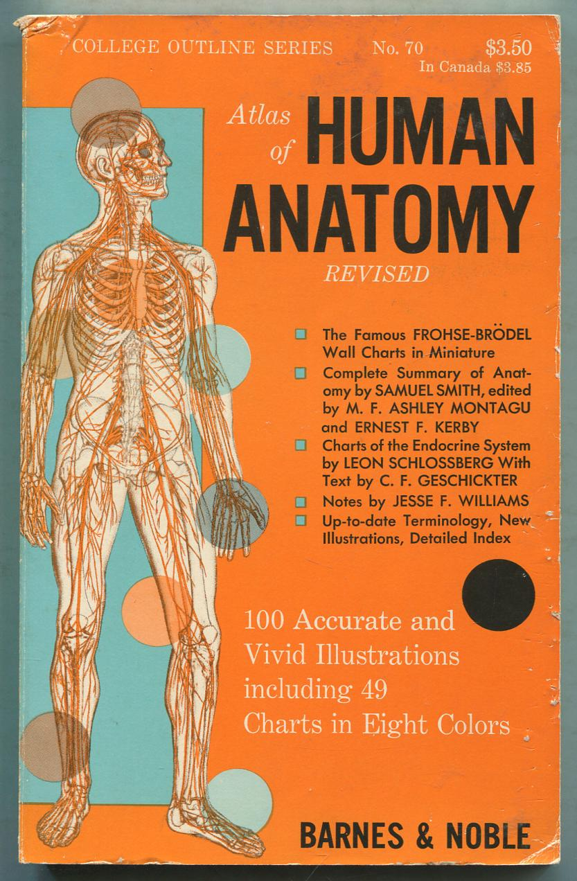 Atlas Of Human Anatomy By Frohse Franz Max Brodel And Leon