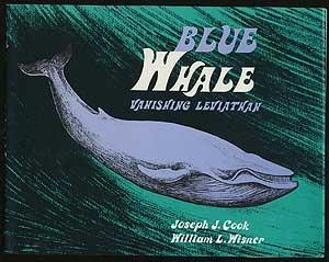 Blue Whale: Vanishing Leviathan