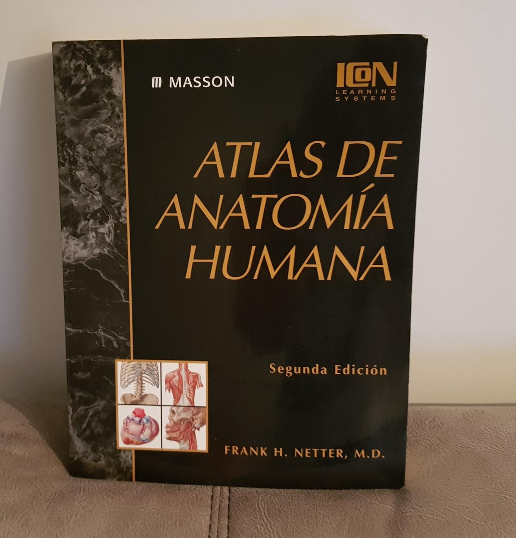 atlas anatomía humana - Iberlibro