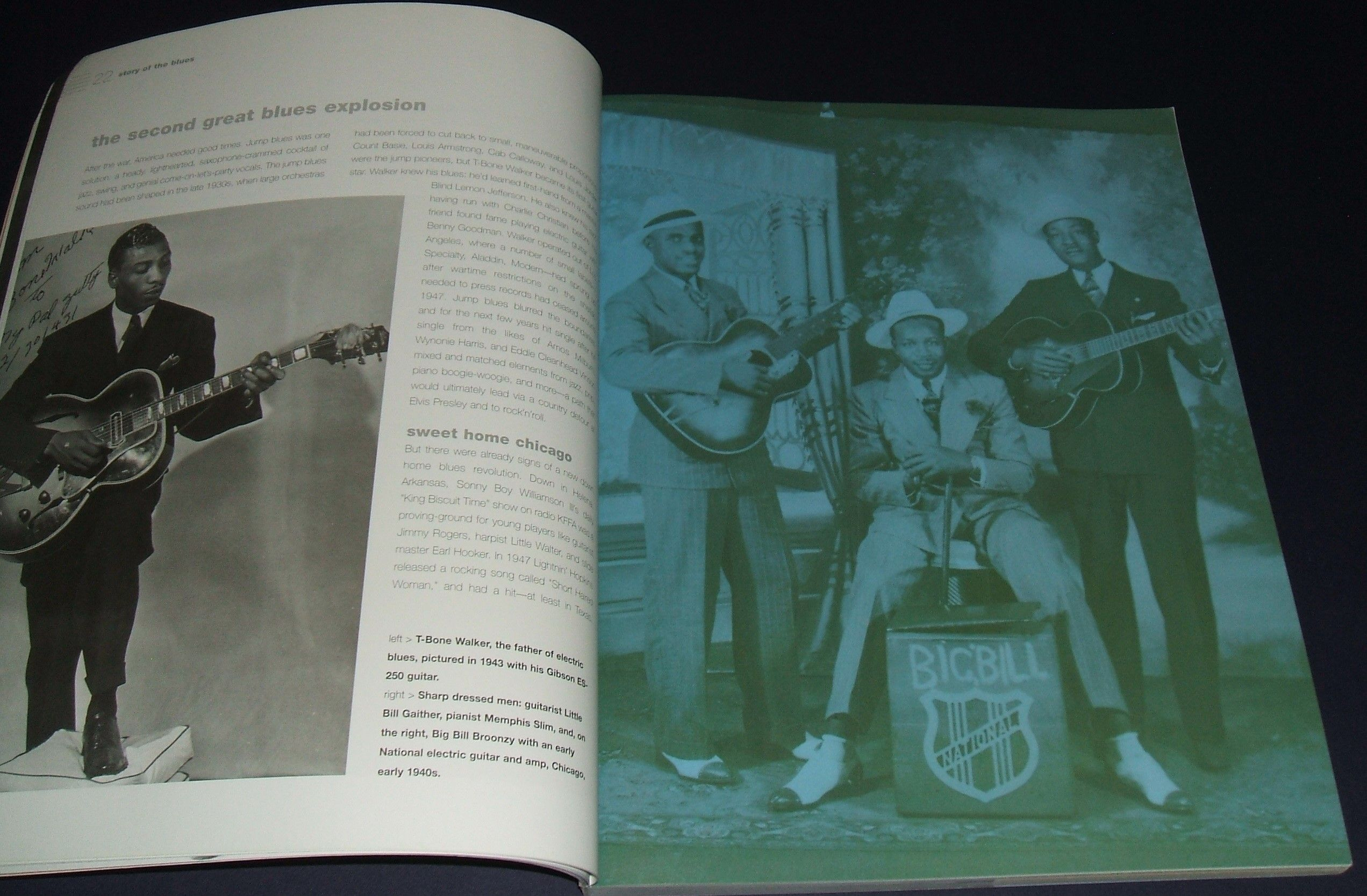 The American Blues Guitar: an Illustrated