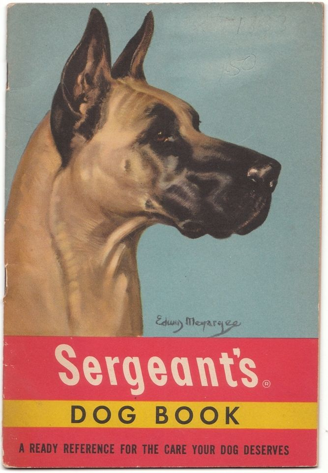 A 1950 Vintage Advertising Pamphlet for Dog