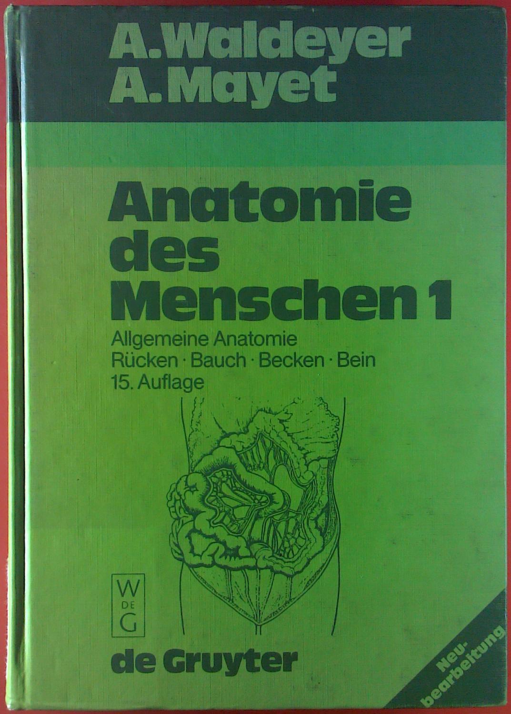 anatomie des menschen von waldeyer a - ZVAB