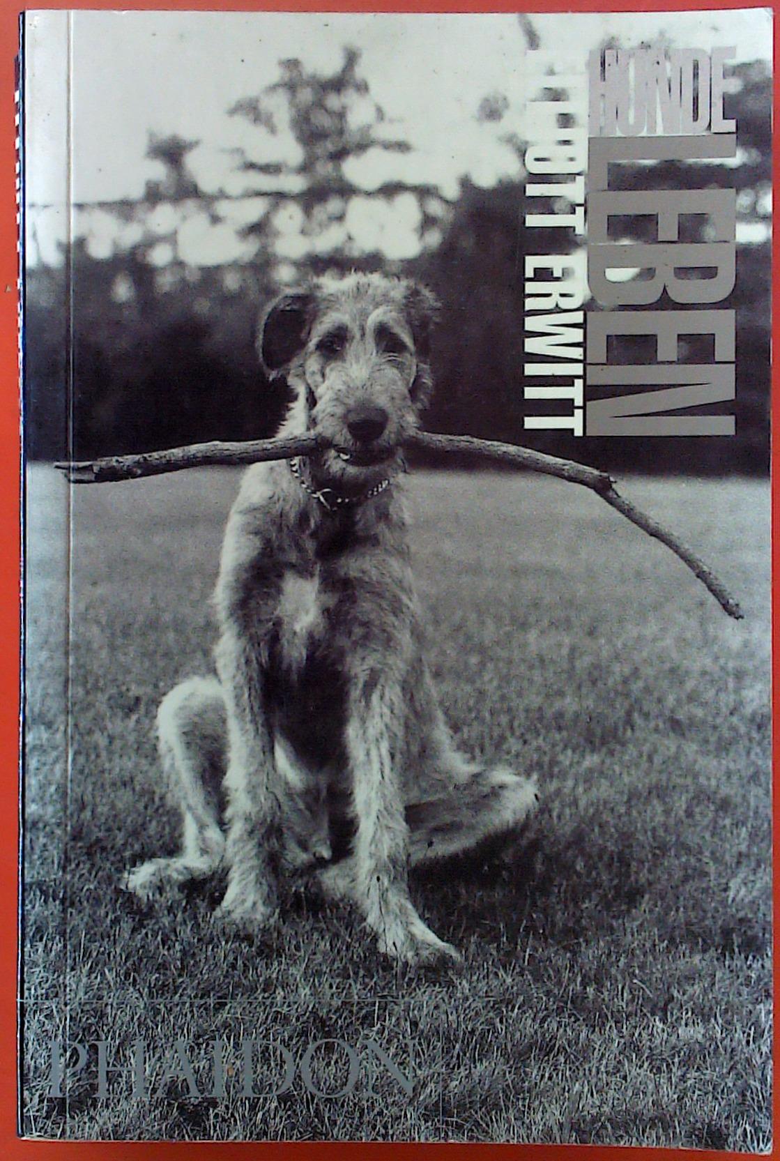 Hundeleben: Elliott Erwitt