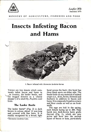 Insects Infesting Bacon and Hams | MAFF Leaflet 373, amended 1979