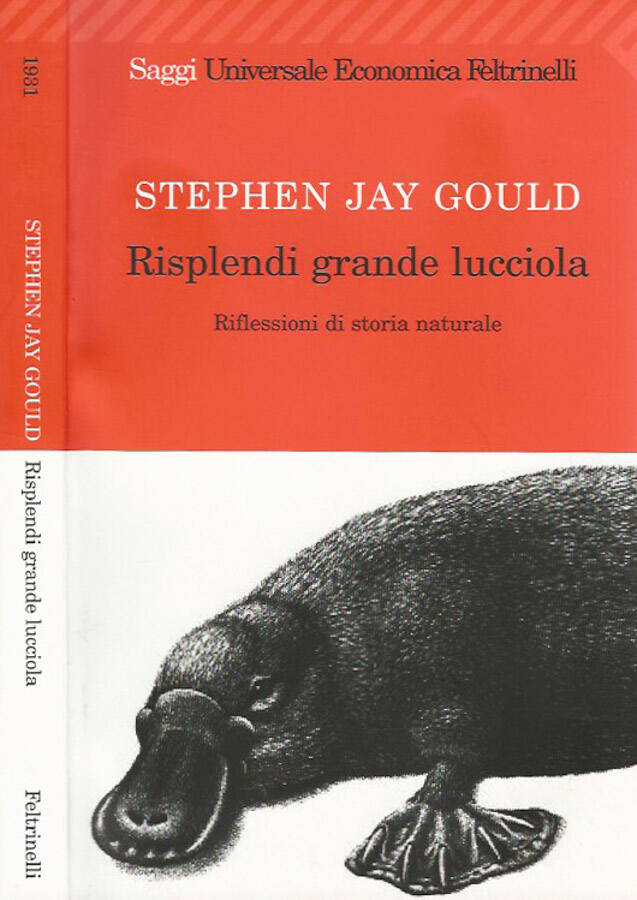 Risplendi grande lucciola. Riflessioni di storia naturale - Stephen Jay Gould