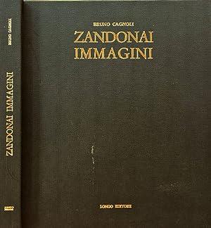 Zandonai Immagini Comune di Rovereto. Comitato per: Bruno Cagnoli