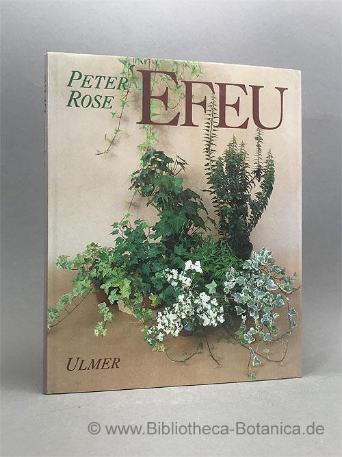 Efeu.: Rose, Peter Q./Heieck,