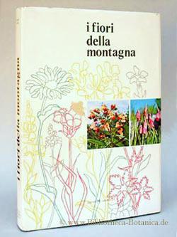 i fiori della montagna. Iconagrafia Fotografica.: Morelli, Giuseppe: