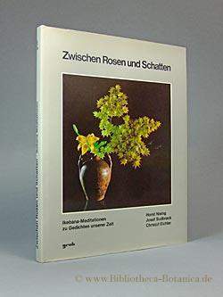 Zwischen Rosen und Schatten. Ikebana-Meditationen zu Gedichten: Sudbrack, Josef [Hrsg.]/Nising,