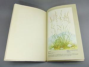Gräser im Bilde.: L. C. Nungesser, Landwirtschaftliche Samengroßhandlung [Hrsg.]: