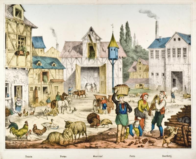 """landwirtschaft  bauernhof """"tenuta ferme bauernhof"""
