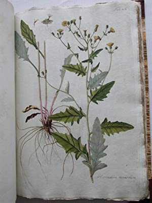 Descriptiones et Icones Plantarum Rariorum Hungariae: Waldstein, Franz de Paula Adam, Graf von, and...
