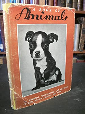 A Book of Animals: Cats, Dogs, Horses, Birds, Farm and Zoo Animals: Holme, Bryan