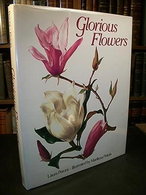 Glorious Flowers: Peroni, Laura