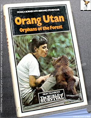 Orang Utan: Orphans of the Forest: Monica Borner & Bernard Stonehouse