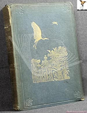 Ornithological Rambles in Sussex: With a Systematic Catalogue of the Birds of That County and Rem...