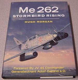 Me 262 Stormbird Rising: Morgan, Hugh