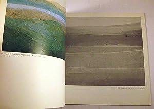 Za Choung Kim [Korean Art Book]: Za Choung Kim