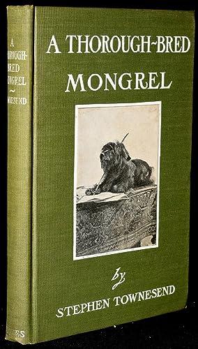 A THOROUGH-BRED MONGREL: Stephen Townesend