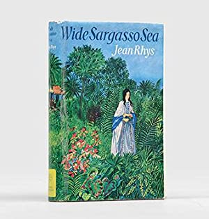 rochester in duigans wide sargasso sea essay Character of rochester in charlotte bronte's jane eyre and jean rhys' wide sargasso sea in five pages this research essay contrasts the differences in rochester's portrayal in these two novels.