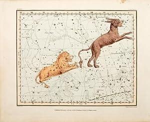 Untitled] Leo Minor, Lynx. Plate V: JAMIESON, Alexander.