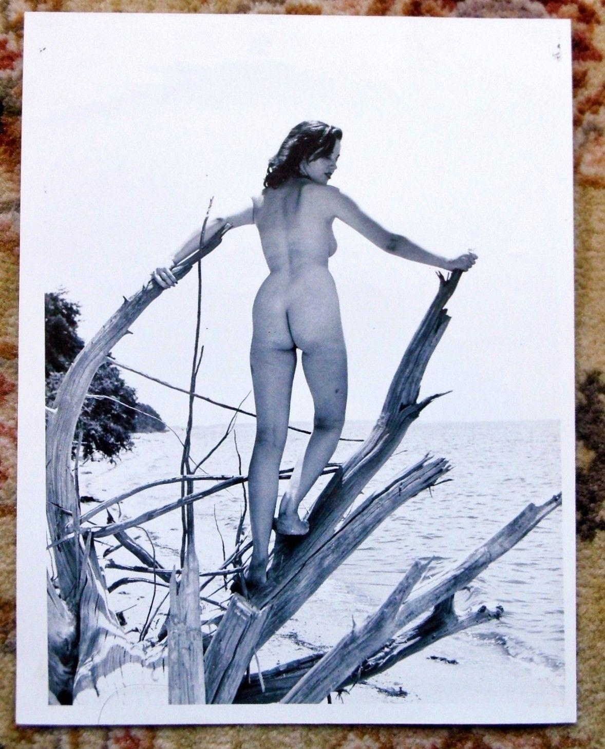 1965 ORIGINAL VINTAGE NUDE PHOTO by JACK KERNS of a YOUNG NUDIST WOMAN Artistically Posed in Nature Jack Kerns