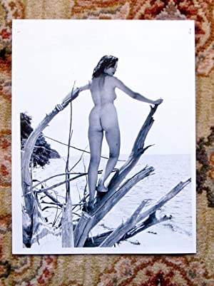 1965 ORIGINAL VINTAGE NUDE PHOTO by JACK KERNS of a YOUNG NUDIST WOMAN Artistically Posed in Nature...