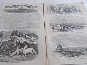 The Illustrated London News (Single Complete Issue: Vol. XXV No. 711, November 11, 1854) With Lead ...