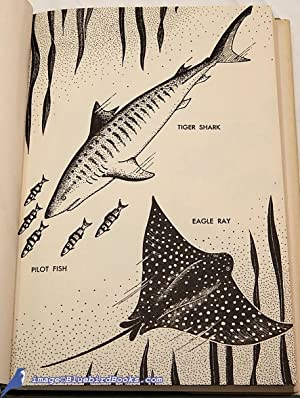 Shark Fishing off the Great Barrier Reef: MAZET, Horace S