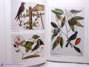 Catesby's Birds of Colonial America: CATESBY, Mark; FEDUCCIA, Alan (editor)