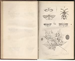 First and Second Report on the Noxious, Beneficial and Other Insects of the State of New-York