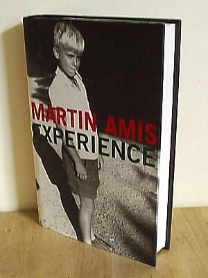 Experience: Amis, Martin
