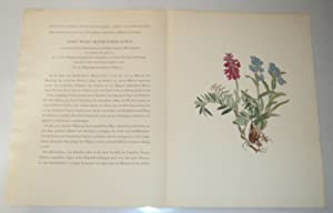 ORIGINAL PROSPECTUS WITH A COLOR PLATE FOR