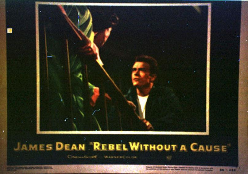 REBEL WITHOUT A CAUSE MOVIE POSTER/REBEL WITHOUT A CAUSE/US LOBBY CARD