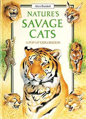 Nature's Savage Cats (A Pop-Up Exploration)
