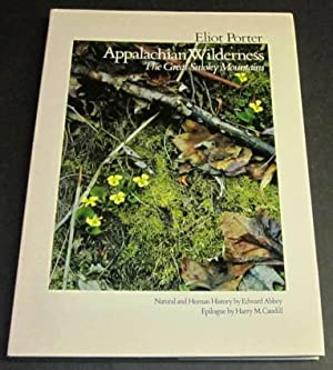Appalachian Wilderness The Great Smoky Mountains