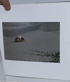 Unveiling: Chao, Chuan-An