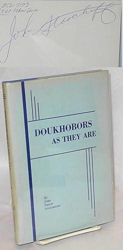 Doukhobors as they are: Stoochnoff, John Philip