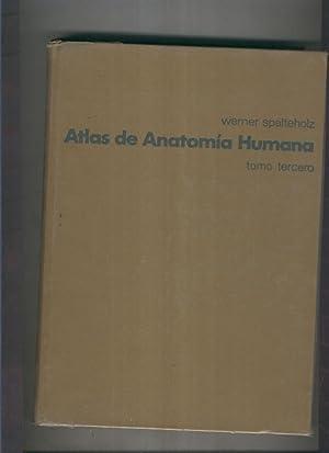 Atlas de anatomia humana tomo tercero: Werner Spalteholz