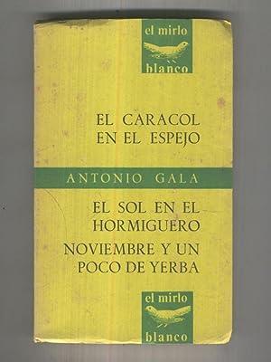 El Mirlo Blanco numero 13: Teatro: El: Antonio Gala
