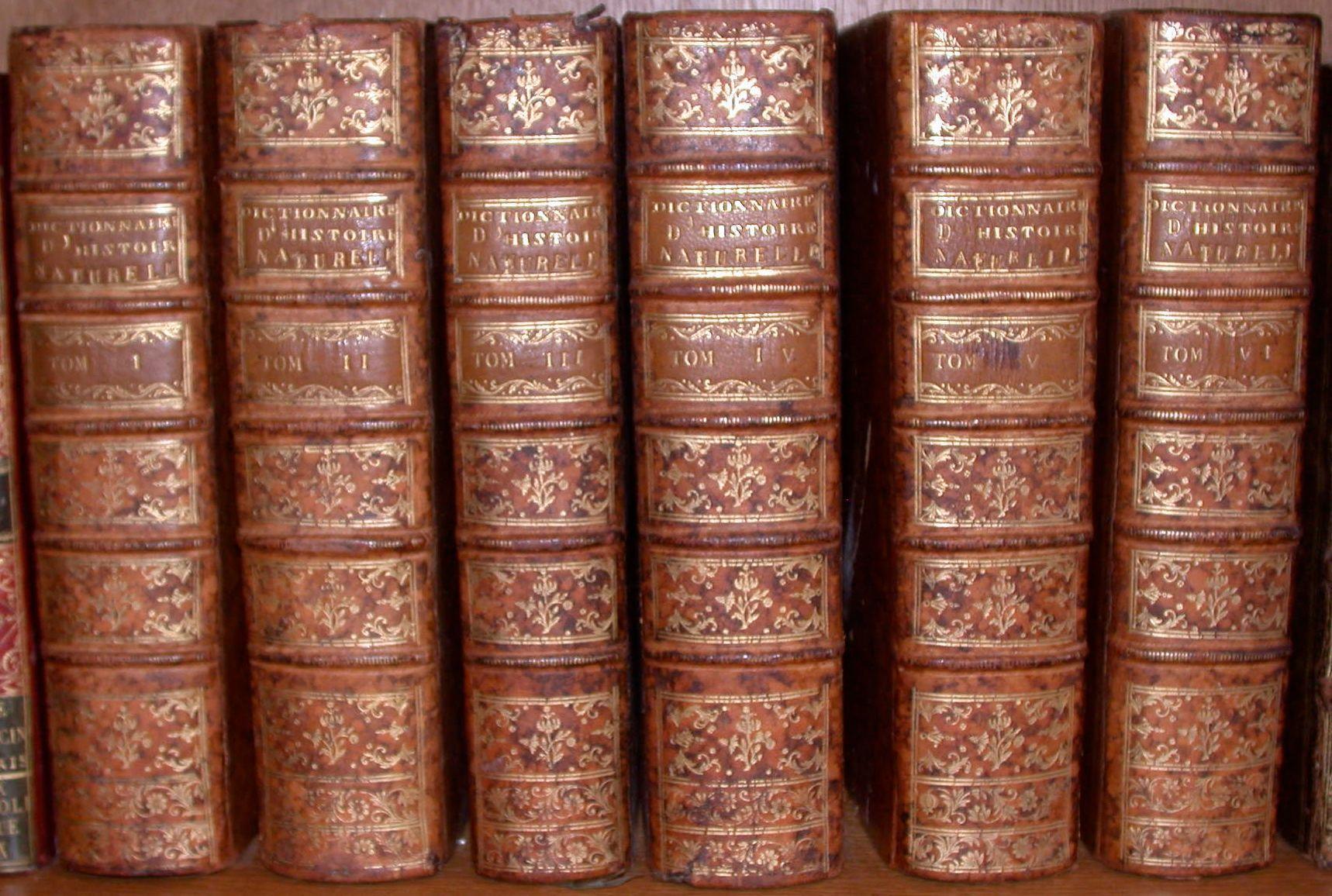Dictionnaire raisonné universel d'histoire naturelle ; Contenant l'histoire des ...