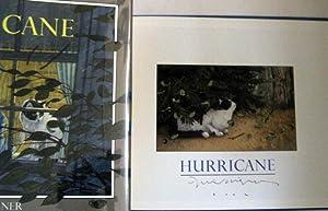 Hurricane: Wiesner, David
