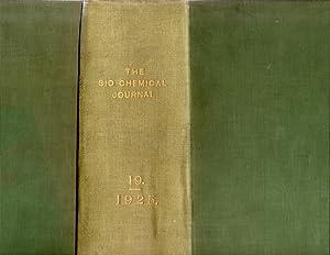 Biochemical Journal Volume XIX 1925: Dudley, Harold Ward and Harden, Arthur (editors)