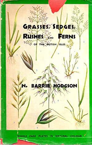 Grasses, Sedges, Rushes and Ferns of the: Hodgson, N. Barrie