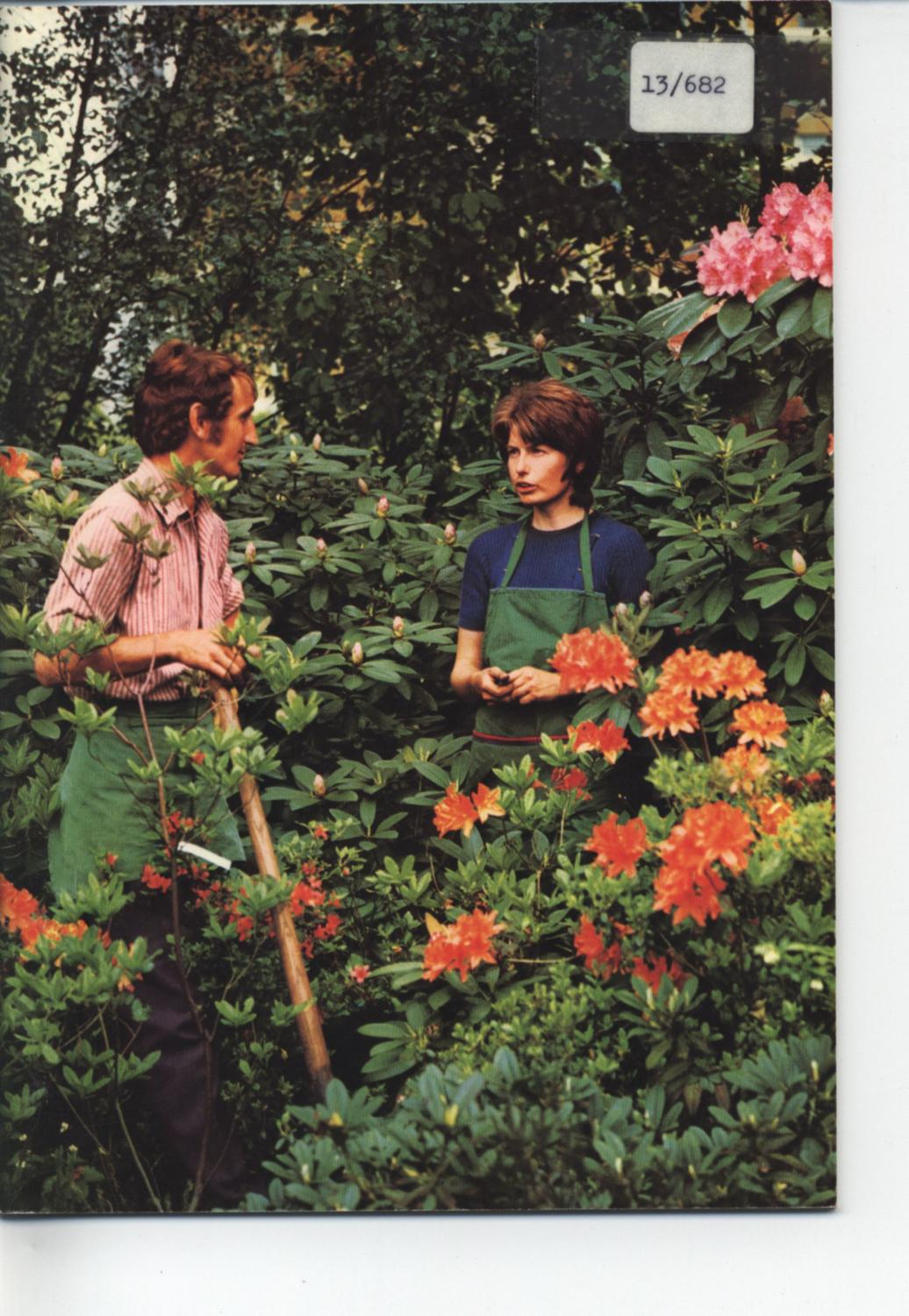 Berufsbild Gärtner