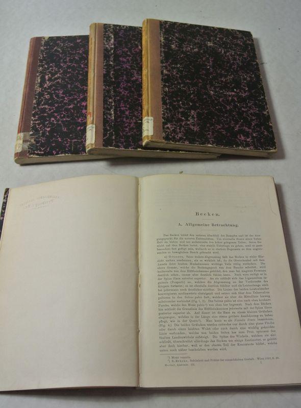 handbuch der anatomie - ZVAB