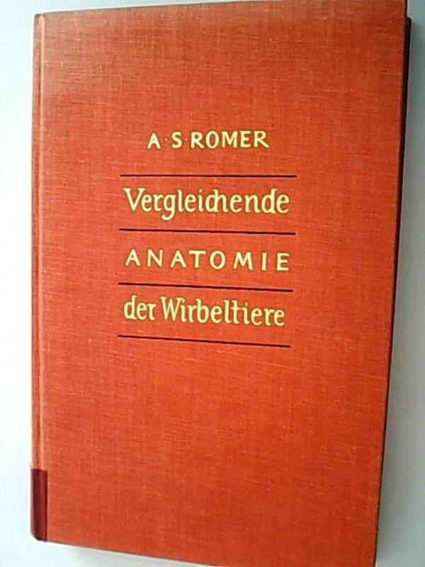 vergleichende anatomie wirbeltiere von alfred sherwood romer hans ...